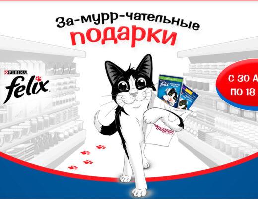 Купить корм для кошек по акции.