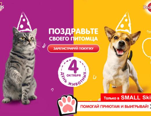 Промо акция вискас Казахстан 2021